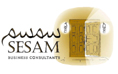 Sesam Business Consultants